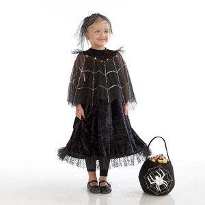 NWT POTTERY BARN HALLOWEEN BLK SPIDER QUEEN 3T